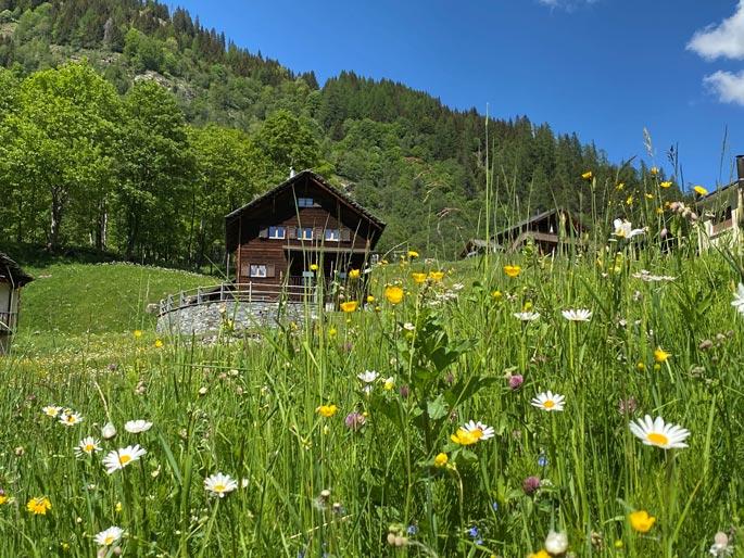 Chalet-aussen-Blumen